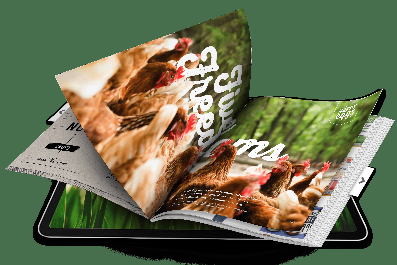 Digital brochure in iPad